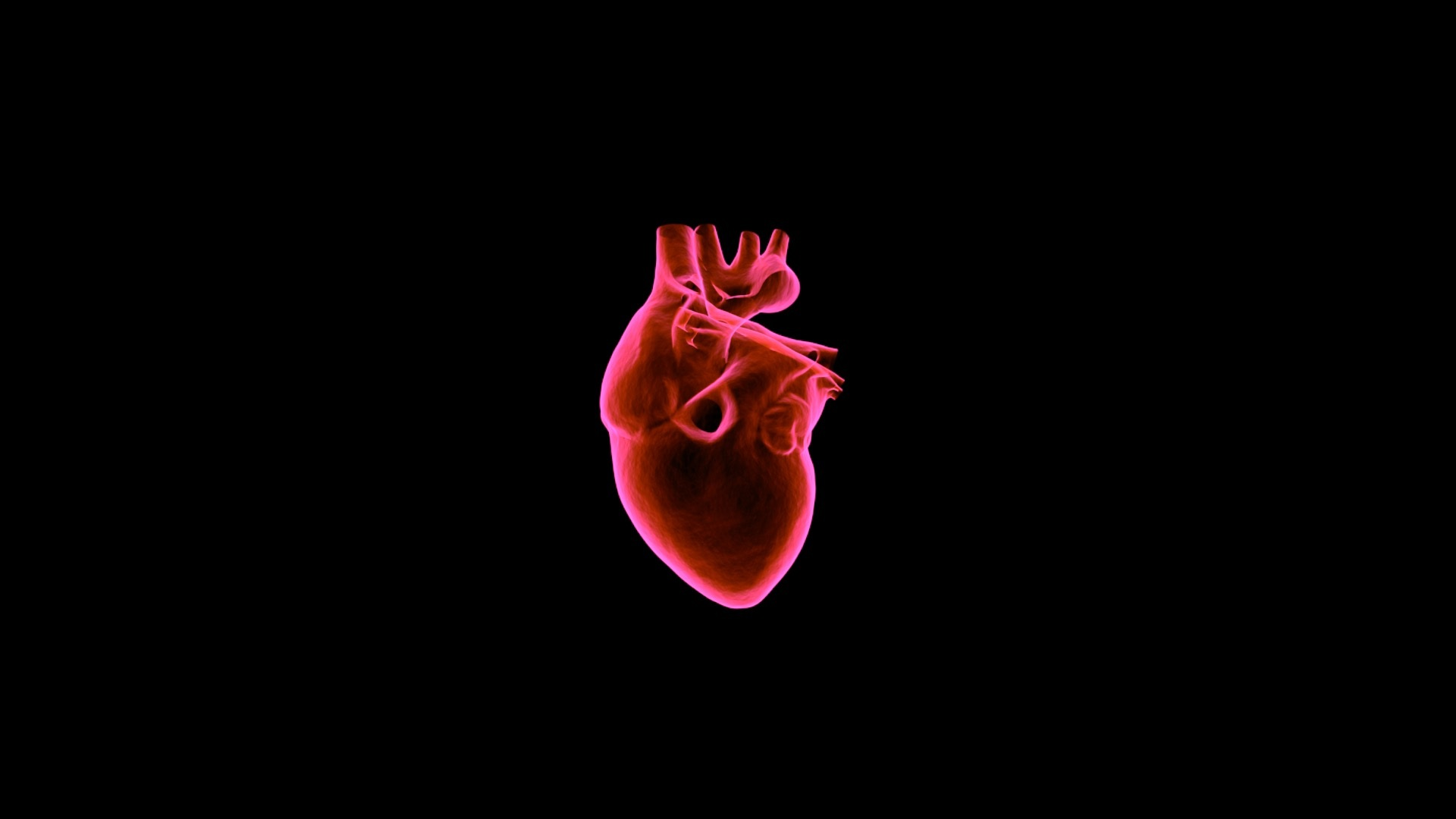 50 Jahre Herztransplantation in Deutschland